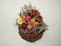 dry_flower2