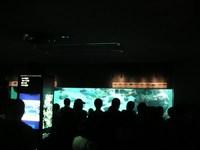 kasa_aquarium